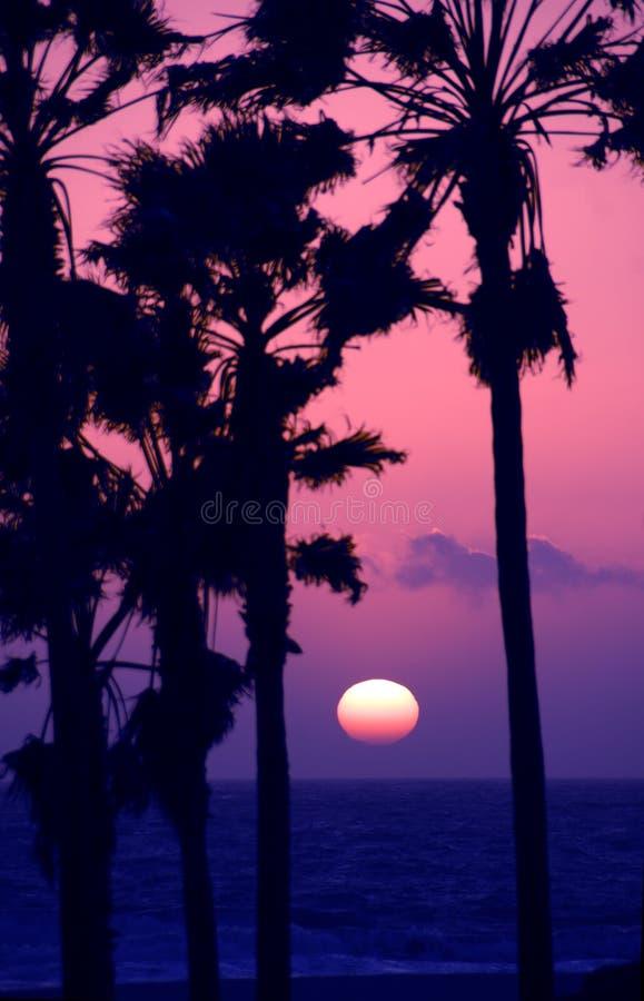 ρόδινο ηλιοβασίλεμα ουρανού στοκ φωτογραφία με δικαίωμα ελεύθερης χρήσης