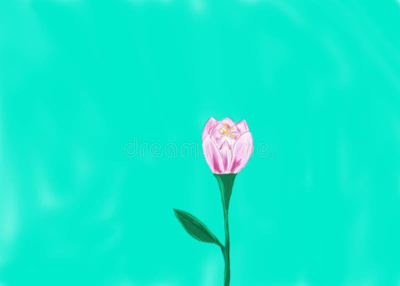 Ρόδινο και πορφυρό λουλούδι με ένα τυρκουάζ υπόβαθρο διανυσματική απεικόνιση