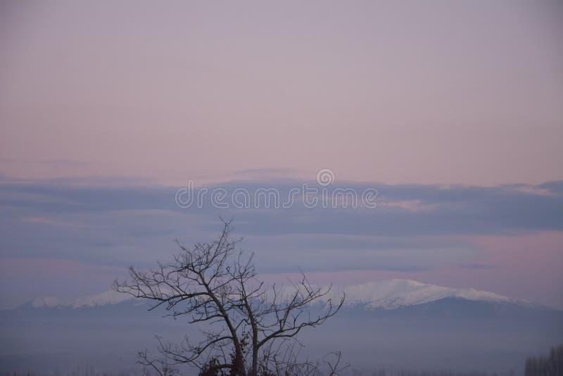 Ρόδινο τοπίο καραμελών στοκ φωτογραφίες