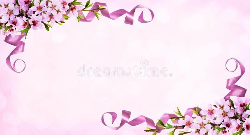 Ρόδινο υπόβαθρο με τους κλαδίσκους άνοιξη των λουλουδιών και του μεταξιού ροδάκινων ribb ελεύθερη απεικόνιση δικαιώματος