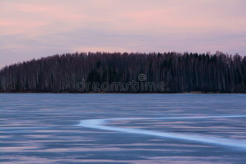 Ρόδινο χειμερινό ηλιοβασίλεμα στοκ εικόνα