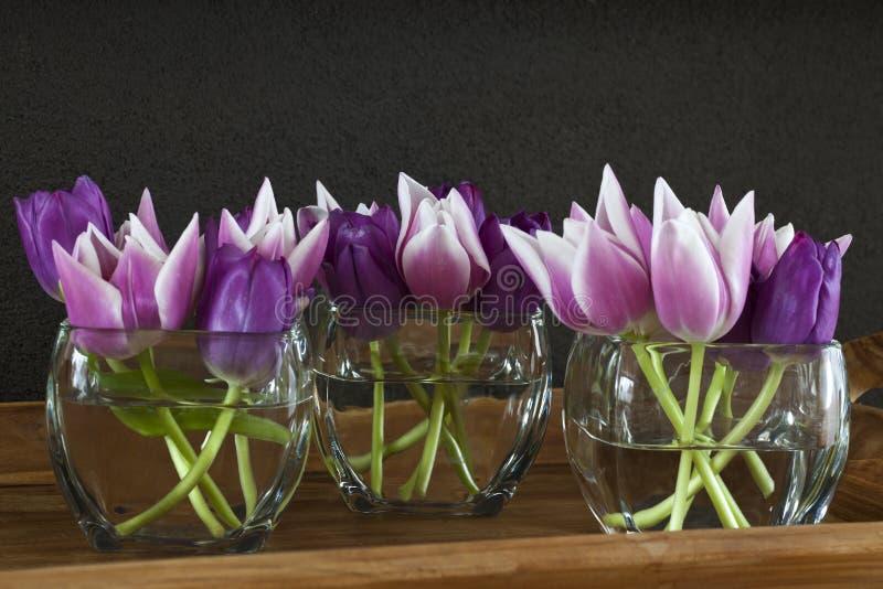 ρόδινο vase τουλιπών στοκ εικόνα με δικαίωμα ελεύθερης χρήσης