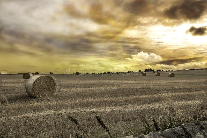 Ρόλοι σανού σε έναν ανοικτό τομέα με το δραματικό ουρανό στοκ φωτογραφίες με δικαίωμα ελεύθερης χρήσης