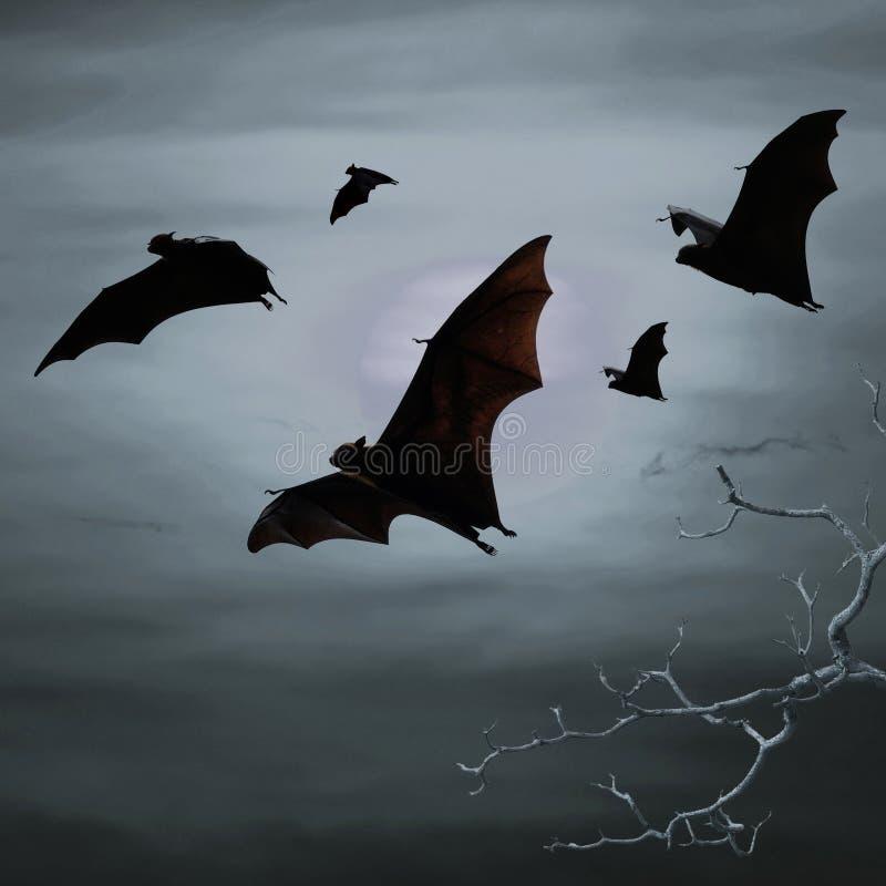Ρόπαλα που πετούν τη νύχτα στοκ φωτογραφία