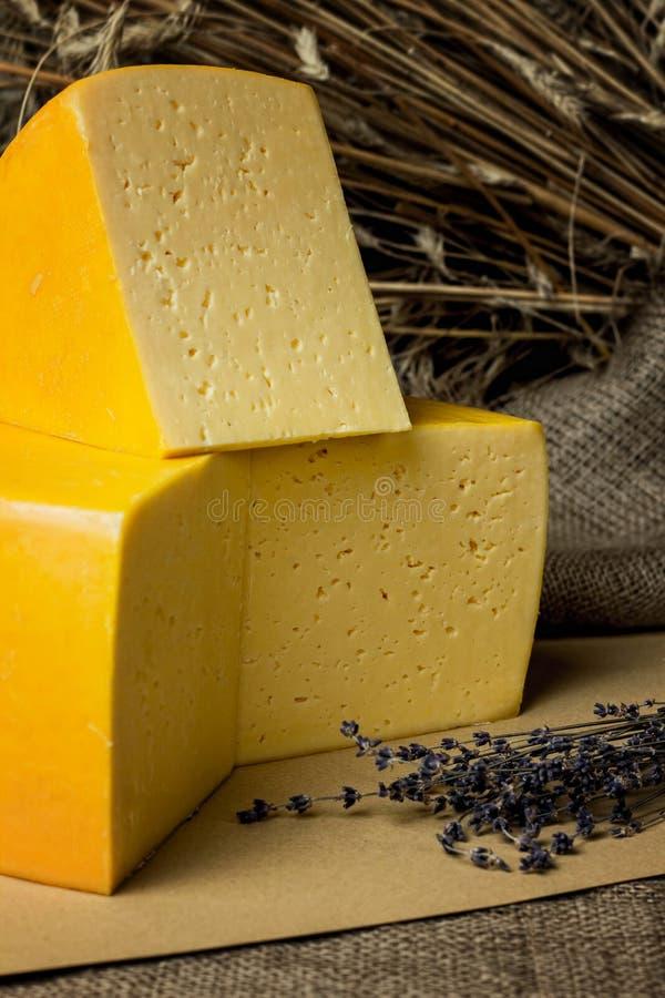 Ρόδα περικοπών του τυριού σε έναν ξύλινο πίνακα στοκ φωτογραφία με δικαίωμα ελεύθερης χρήσης