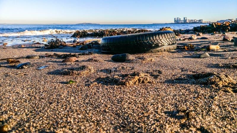 Ρόδα στην άμμο στοκ εικόνα με δικαίωμα ελεύθερης χρήσης