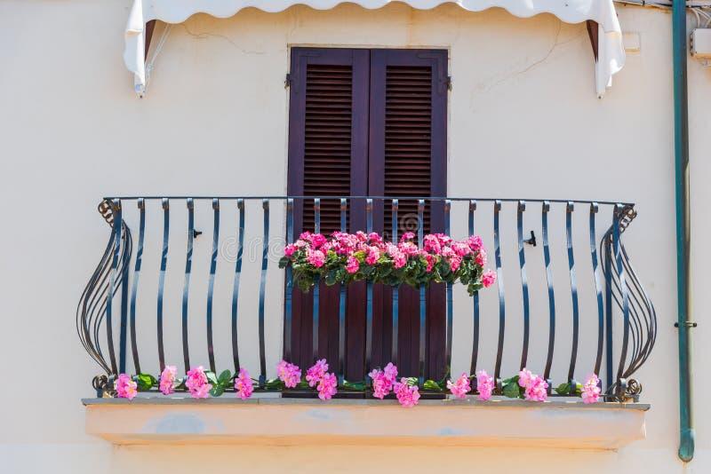 Ρόδινα λουλούδια σε ένα μπαλκόνι στην άνοιξη στοκ εικόνα