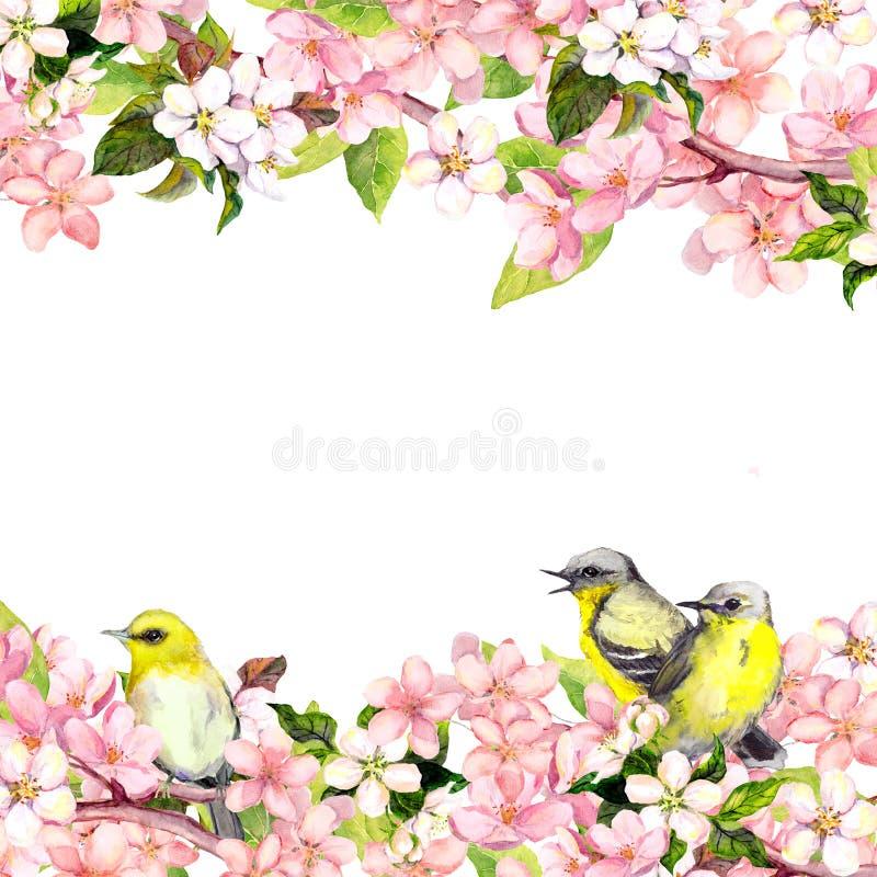 Ρόδινα λουλούδια sakura ανθών και πουλιά τραγουδιού Floral κάρτα ή κενό watercolor διανυσματική απεικόνιση