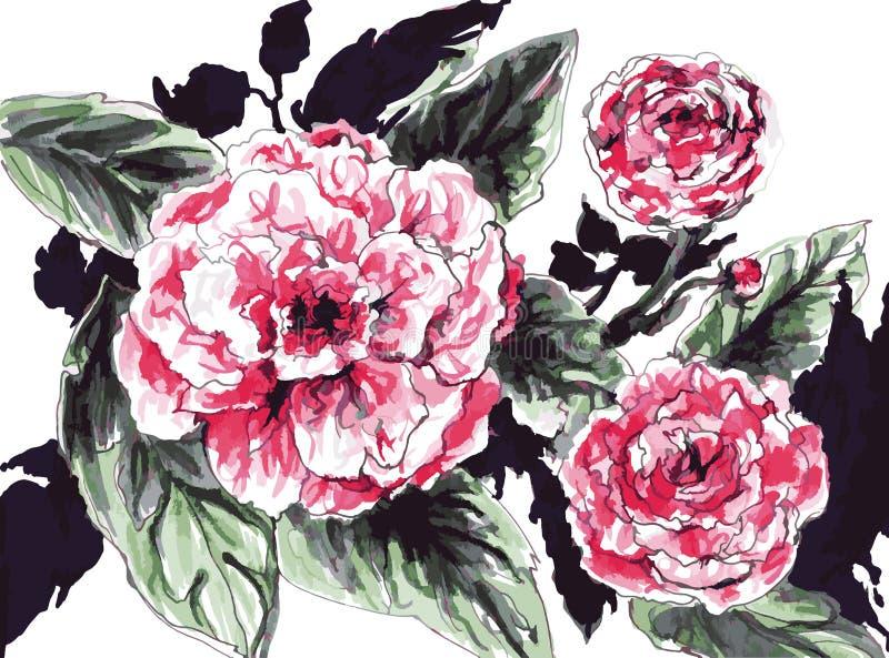ρόδινα τριαντάφυλλα ελεύθερη απεικόνιση δικαιώματος