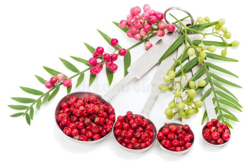 Ρόδινα Peppercorns, φρέσκος και ξηρός στοκ εικόνες