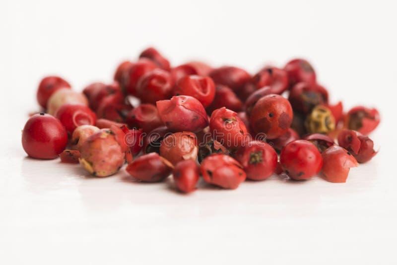 Ρόδινα peppercorns στοκ εικόνα με δικαίωμα ελεύθερης χρήσης