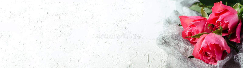 Ρόδινη ανθοδέσμη τριαντάφυλλων πέρα από το άσπρο υπόβαθρο Τοπ άποψη με το διάστημα αντιγράφων απαγορευμένα στοκ φωτογραφία με δικαίωμα ελεύθερης χρήσης