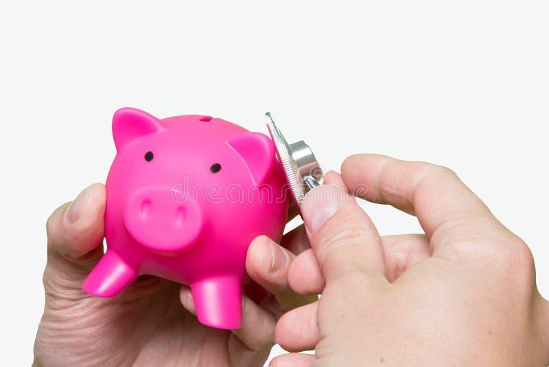Ρόδινη piggy τράπεζα στηθοσκοπίων χεριών ατόμων που απομονώνεται στο άσπρο backgroun στοκ εικόνες με δικαίωμα ελεύθερης χρήσης