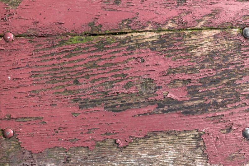 Ρόδινο χρώμα αποφλοίωσης στοκ εικόνα
