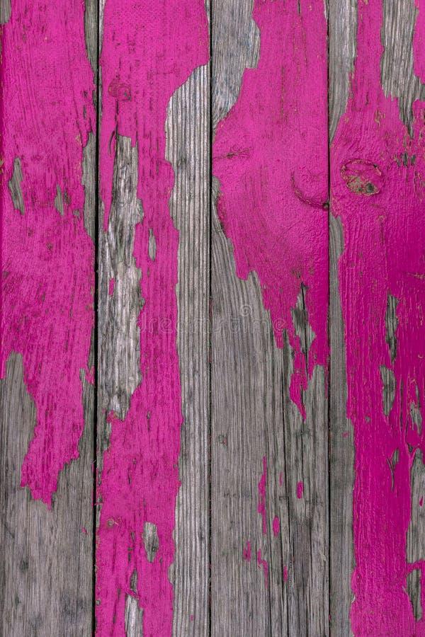Ρόδινο χρώμα αποφλοίωσης στοκ εικόνες