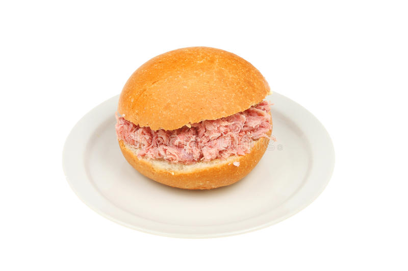 Ρόλος χοιρινού κρέατος σε ένα πιάτο στοκ φωτογραφία με δικαίωμα ελεύθερης χρήσης