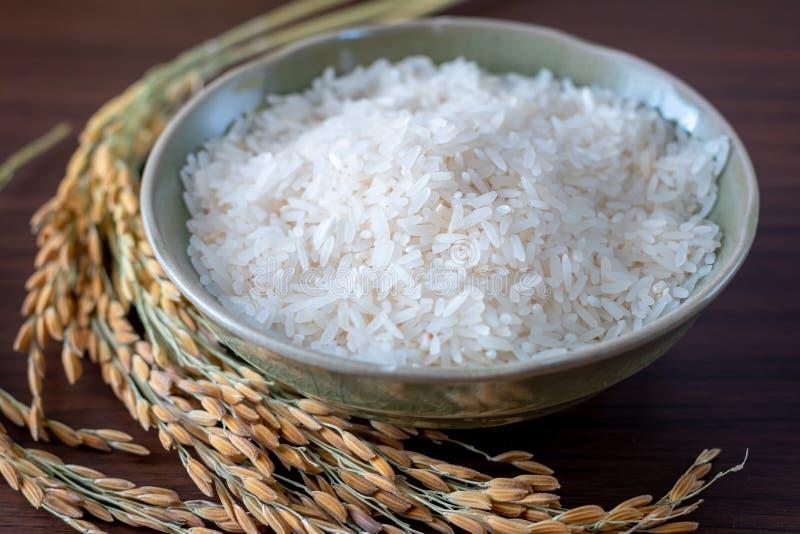 Ρύζι γιασεμί της Ταϊλάνδης και ρύζι με στάχτη σε ξύλινο φόντο στοκ εικόνα