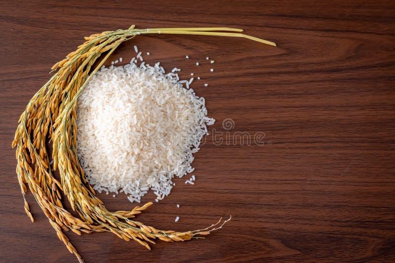 Ρύζι γιασεμί της Ταϊλάνδης και ρύζι με στάχτη σε ξύλινο φόντο στοκ εικόνες