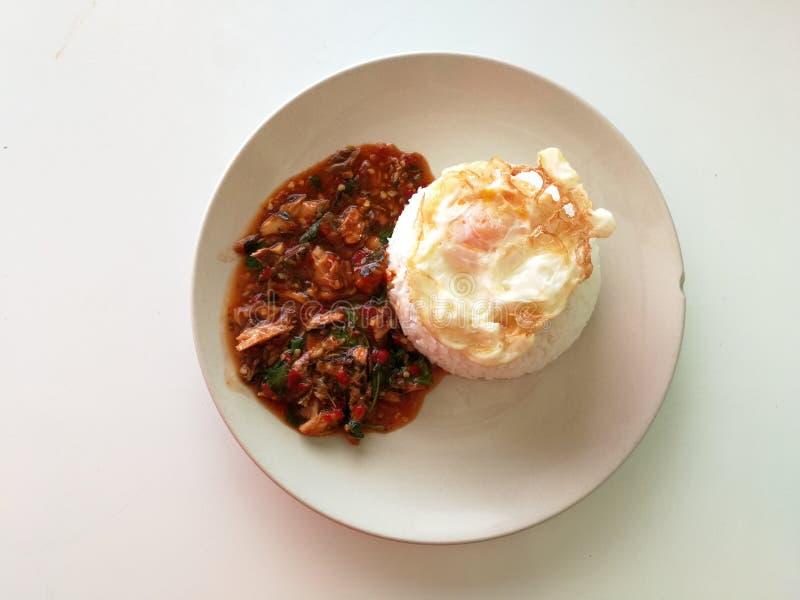 Ρύζι και αυγό στοκ εικόνα