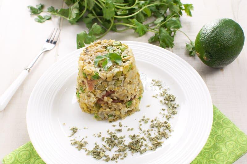 Ρύζι με τα πράσινα λαχανικά και τα χορτάρια στοκ φωτογραφία με δικαίωμα ελεύθερης χρήσης