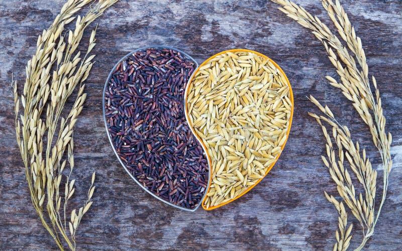 Ρύζι ορυζώνα και μαύρο ρύζι στο καρδιά-διαμορφωμένο πλαστικό κιβώτιο στοκ εικόνες