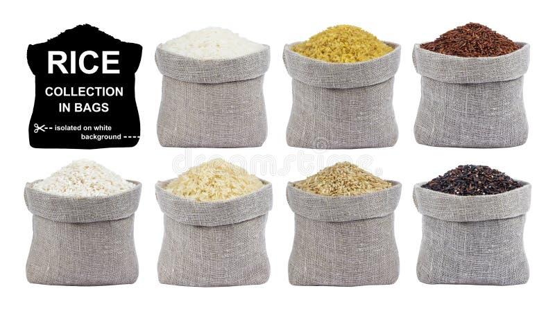 Ρύζι που απομονώνεται στο άσπρο υπόβαθρο Συλλογή των διαφορετικών τύπων ρυζιών στις τσάντες στοκ φωτογραφία με δικαίωμα ελεύθερης χρήσης