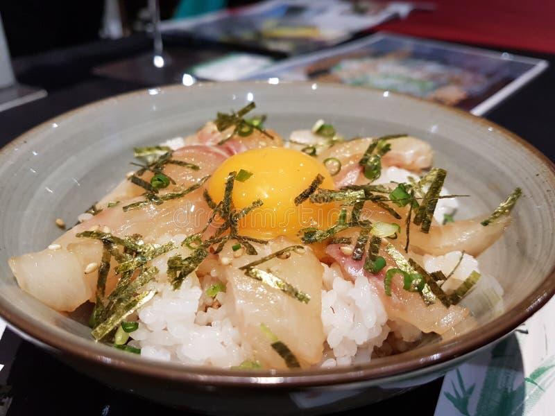 Ρύζι σολομών με το αυγό στοκ φωτογραφία με δικαίωμα ελεύθερης χρήσης