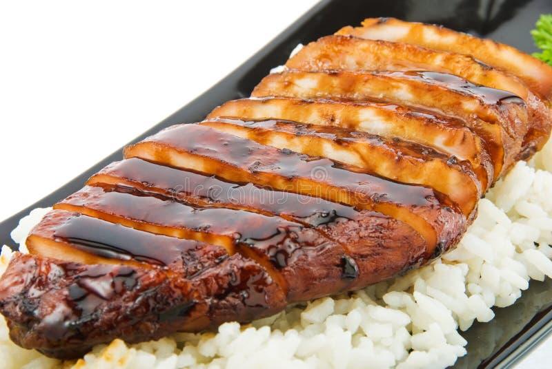 Download ρύζι 2 κοτόπουλου στοκ εικόνα. εικόνα από απομονωμένος - 13189119