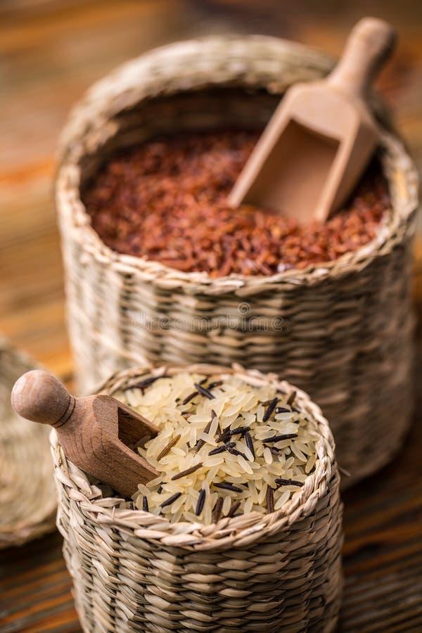Ρύζι στοκ φωτογραφία