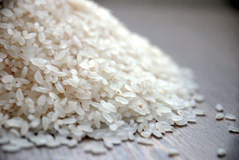 Ρύζι στοκ φωτογραφία με δικαίωμα ελεύθερης χρήσης