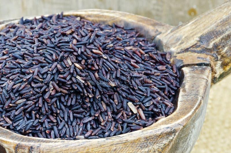 Ρύζι Riceberry στοκ φωτογραφίες