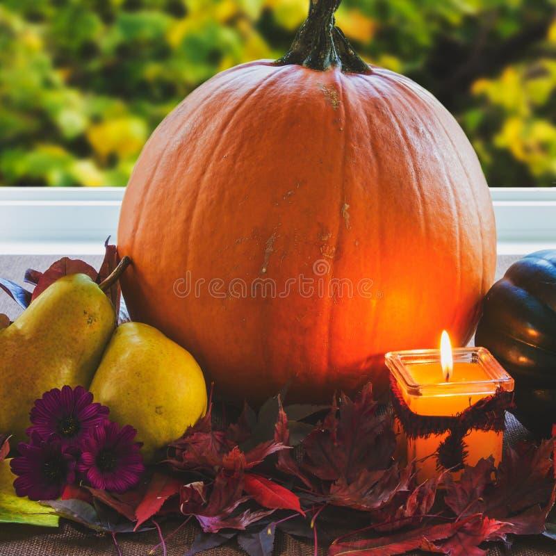 Ρύθμιση ημέρας των ευχαριστιών  θέμα πτώσης στοκ εικόνες
