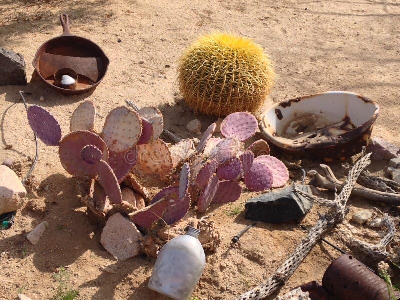 Ρύθμιση κάκτων ερήμων στοκ φωτογραφία