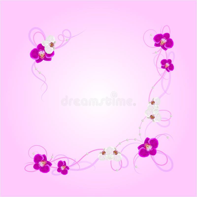 Ρύθμιση των λουλουδιών ορχιδεών διανυσματική απεικόνιση