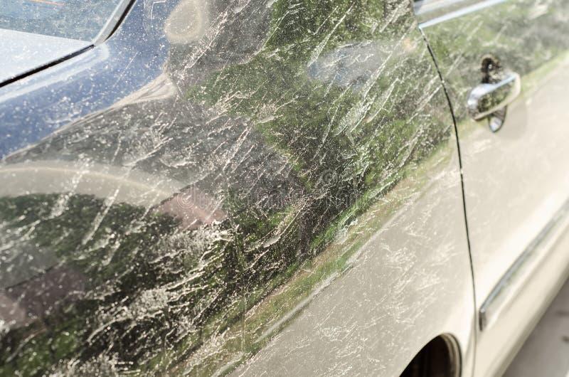 Ρύπος σε ένα μαύρο αυτοκίνητο στοκ εικόνες