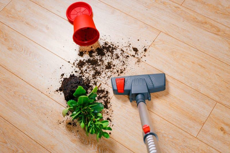 Ρύπος σκουπίσματος με ηλεκτρική σκούπα από το πάτωμα στοκ φωτογραφία με δικαίωμα ελεύθερης χρήσης