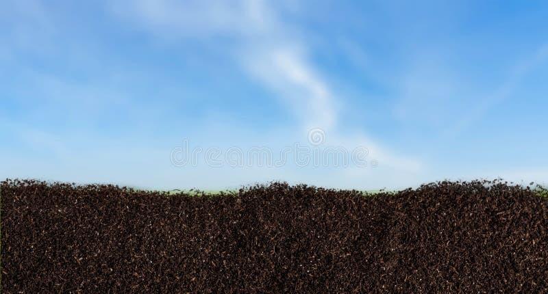 ρύπος στοκ φωτογραφία με δικαίωμα ελεύθερης χρήσης