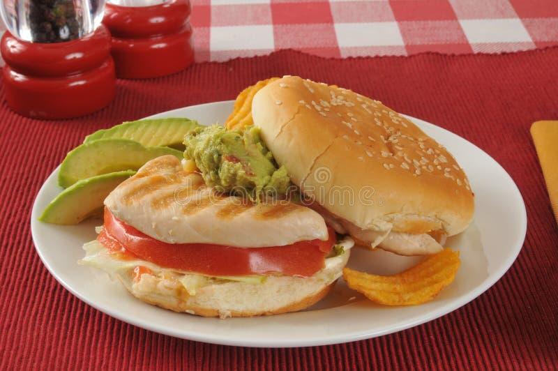 Σάντουιτς κοτόπουλου με τις φέτες αβοκάντο στοκ εικόνα
