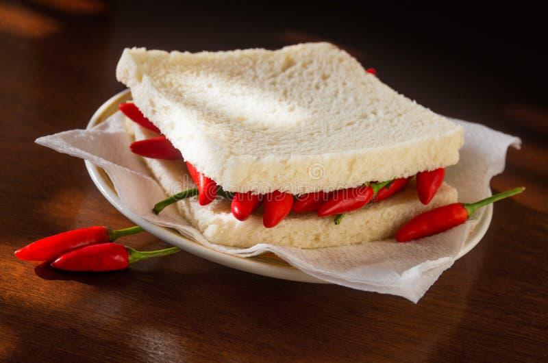 Σάντουιτς πιπεριών τσίλι στοκ εικόνες
