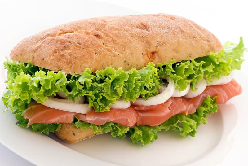 σάντουιτς σολομών στοκ φωτογραφία με δικαίωμα ελεύθερης χρήσης