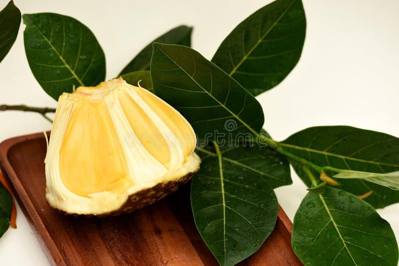 Σάρκα Jackfruit στοκ εικόνα με δικαίωμα ελεύθερης χρήσης