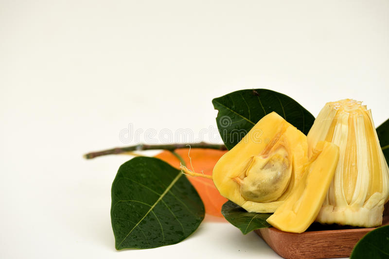 Σάρκα Jackfruit στοκ φωτογραφία