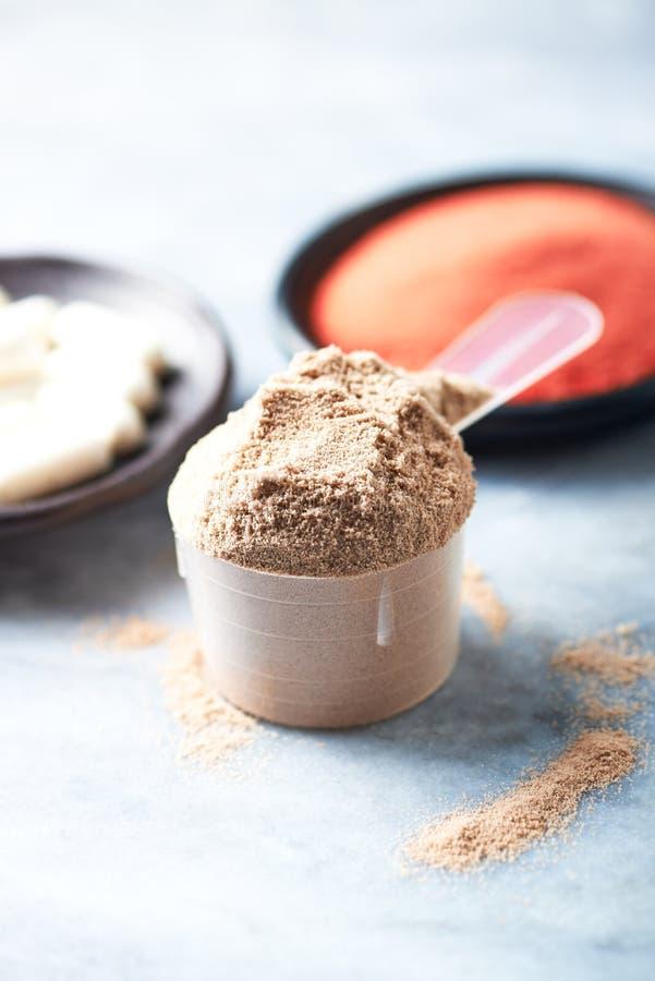 Σέσουλα της πρωτεΐνης ορρού γάλακτος, των καψών βήτα-αλανινών και της σκόνης κρεατίνης Αθλητική διατροφή στοκ εικόνες
