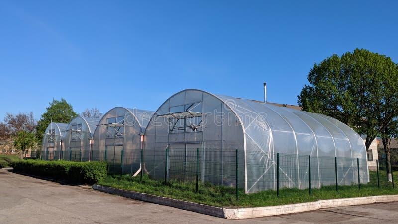 Σήραγγα πολυαιθυλένιου ως πλαστικό θερμοκήπιο σε μια διανομή με την ανάπτυξη των λαχανικών στοκ εικόνα με δικαίωμα ελεύθερης χρήσης