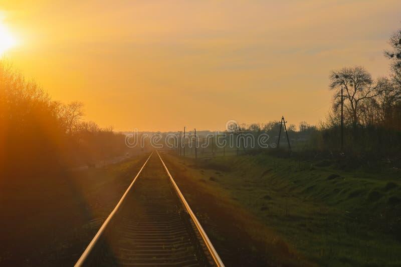Σήραγγα σιδηροδρόμου από τα δέντρα στοκ φωτογραφίες