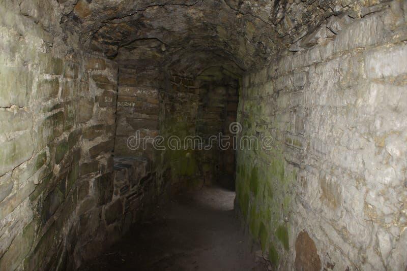 Σήραγγα του Castle περιποίησης στοκ φωτογραφία με δικαίωμα ελεύθερης χρήσης