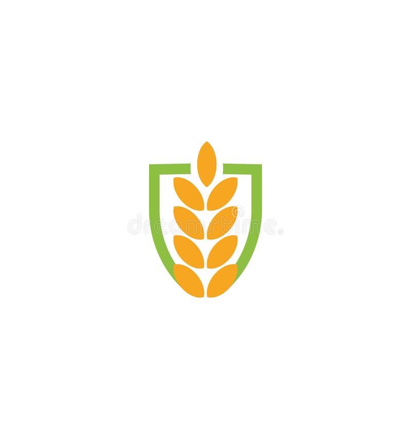 Σίτου διανυσματικό hearldic λογότυπο αυτιών σίτου χρώματος σιταριού απομονωμένο εικονίδιο αφηρημένο πορτοκαλί Στοιχείο φύσης logo απεικόνιση αποθεμάτων