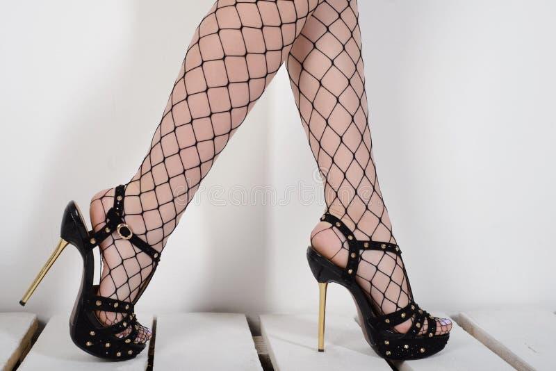 Σαγηνευτικά πόδια γυναικών ` s που φορούν τις γυναικείες κάλτσες διχτυών ψαρέματος και τα υψηλά τακούνια στοκ εικόνες