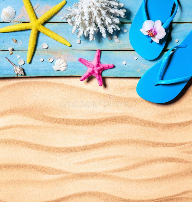Σαγιονάρες, αστερίας, θαλασσινά κοχύλια και κοράλλι σε ξύλινο και άμμος ως υπόβαθρο παραλιών στοκ εικόνες
