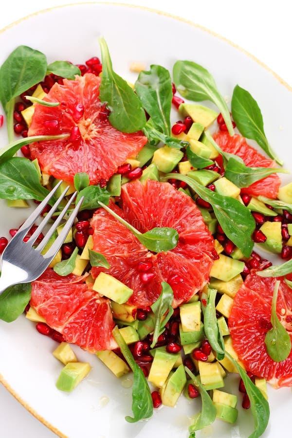 σαλάτα γκρέιπφρουτ αβοκά στοκ φωτογραφία με δικαίωμα ελεύθερης χρήσης